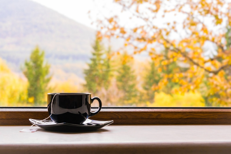 A cup of tea in front of a window with autumn view. Why Is Indoor Air Quality (IAQ) Important?